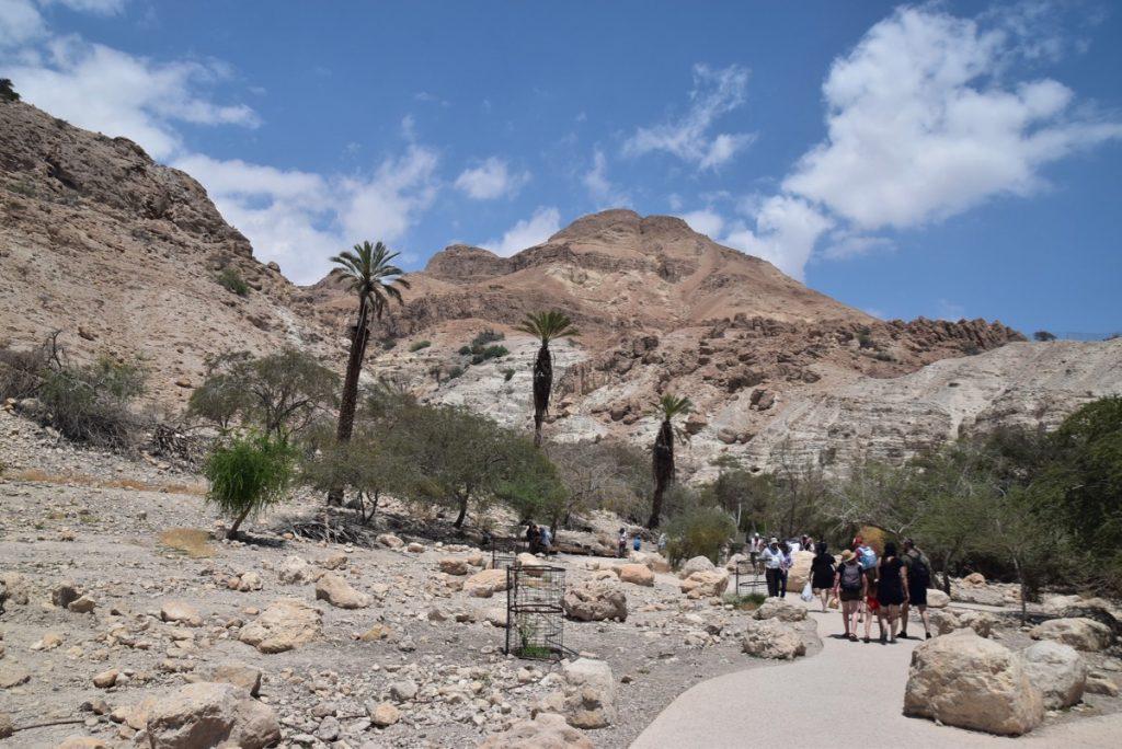Engedi May 2019 Israel Tour with John DeLancey