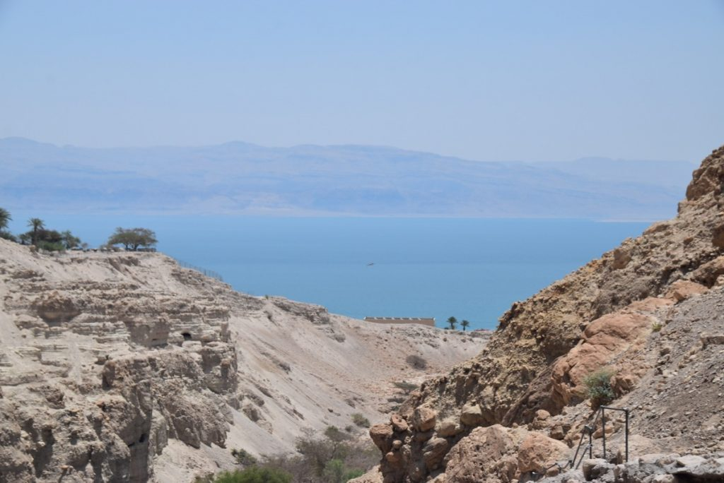 Engedi June 2019 Israel Tour Group with John DeLancey