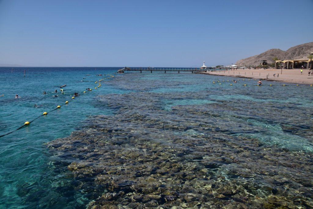 Red Sea Elat June 2019 Israel Tour with John DeLancey