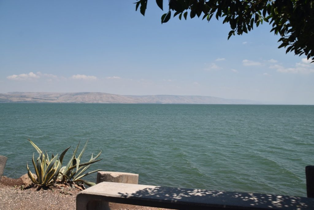 Capernaum shoreline June 2019 Israel Tour with John DeLancey
