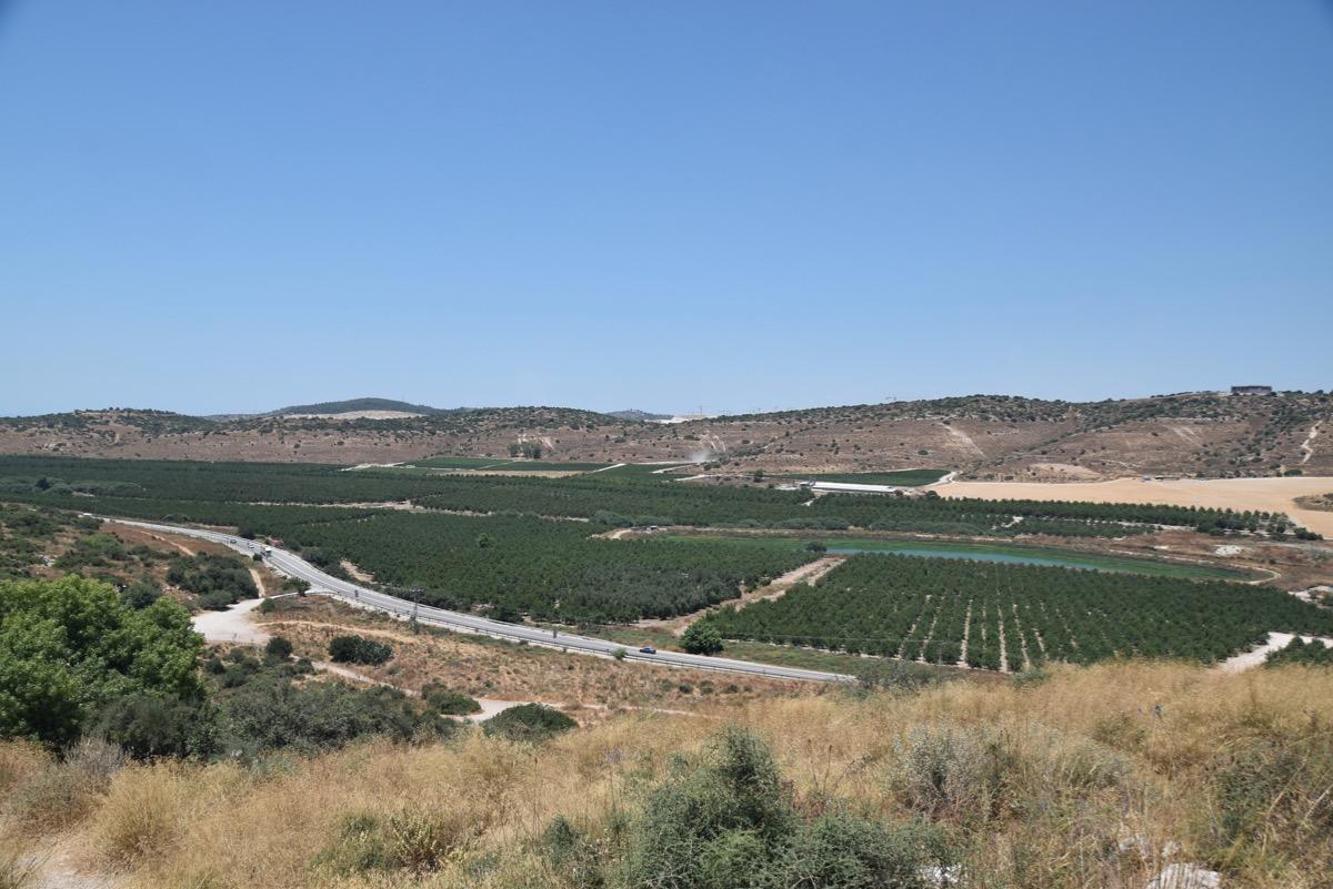 Socoh and Elah Valley