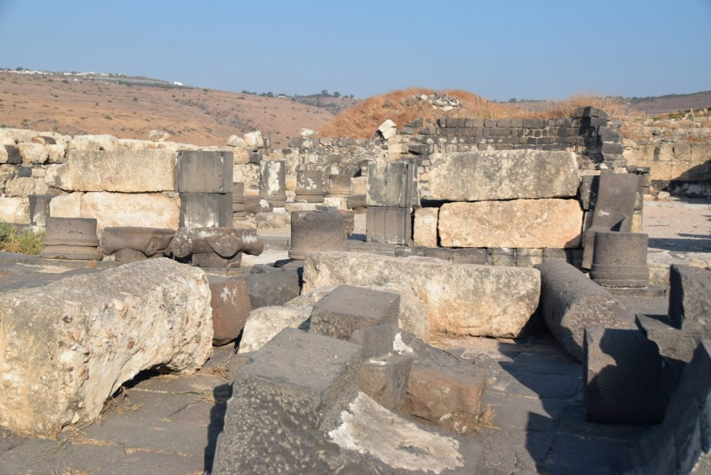 Hippos-Sussita Sept 2019 Israel Tour with John DeLancey