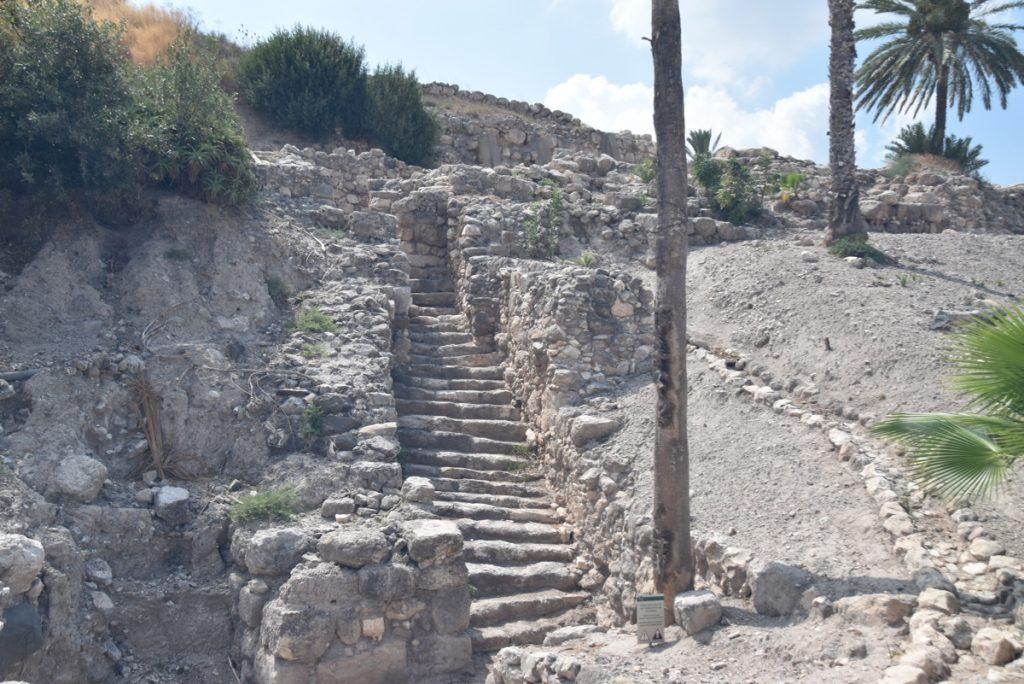 Tel Megiddo Sept 2019 Biblical Israel Tour with John DeLancey