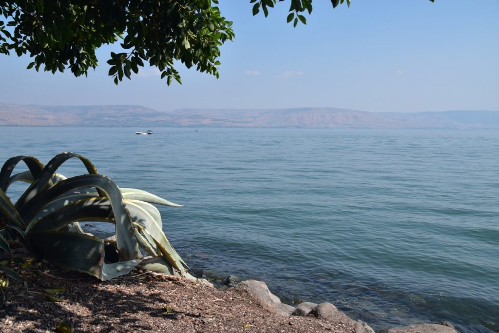 Capernaum Sept 2019 Biblical Israel Tours and John DeLancey