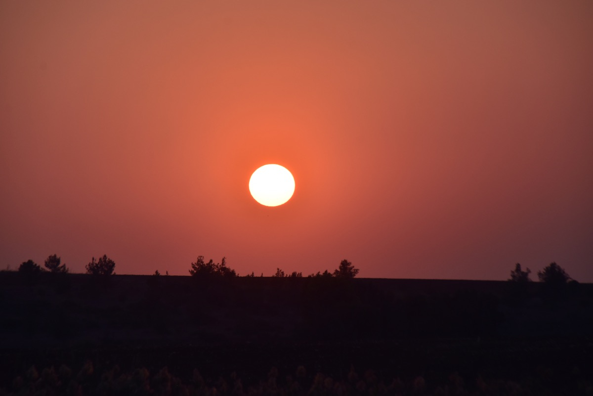 Sunset Shephelah