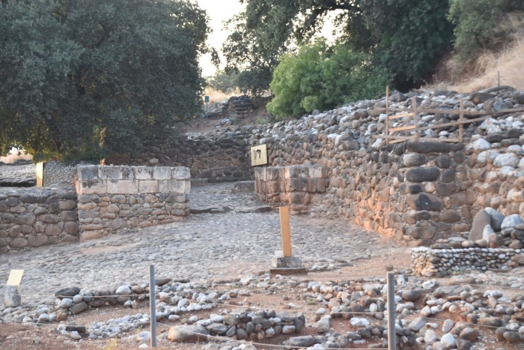 Tel Dan Biblical Israel Tour Nov 2019 with John DeLancey