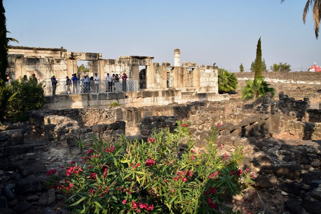 Capernaum November 2019 Biblical Israel Tour with John DeLancey