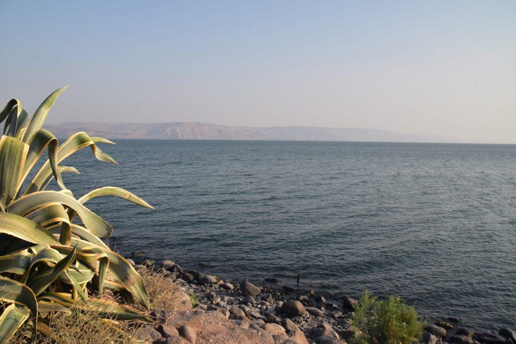 Capernaum November 2019 Biblical Israel Tour with John DeLancey