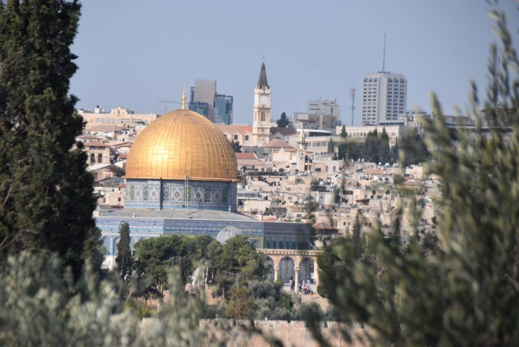 Temple Mount Nov 2019 Biblical Israel Tour with John DeLancey