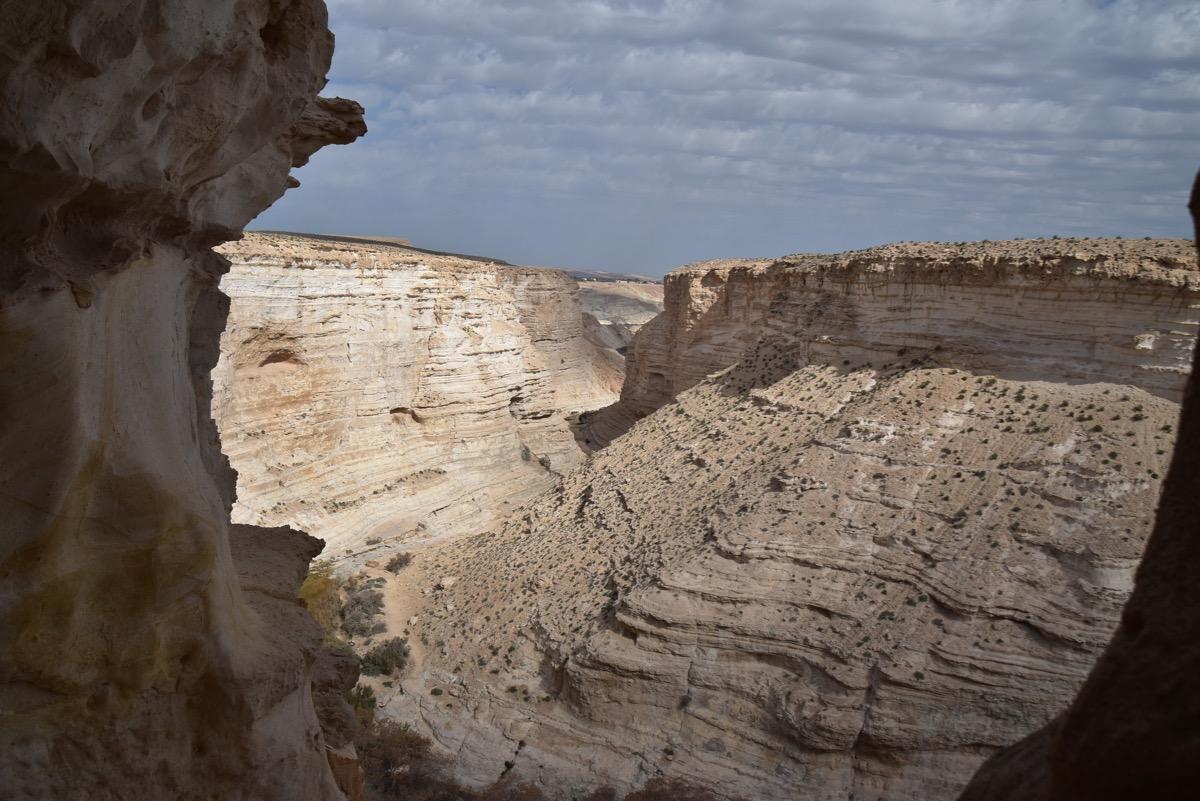 Zin Desert