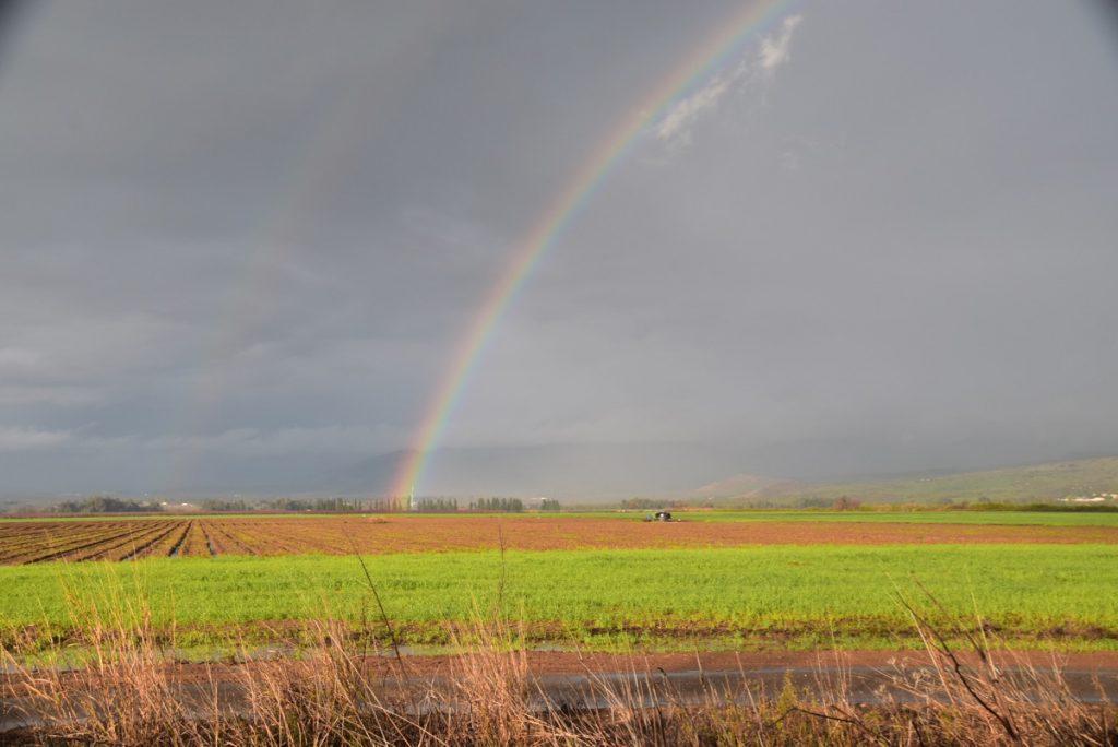 Rainbow Jan 2020 Israel Tour with John DeLancey BIMT