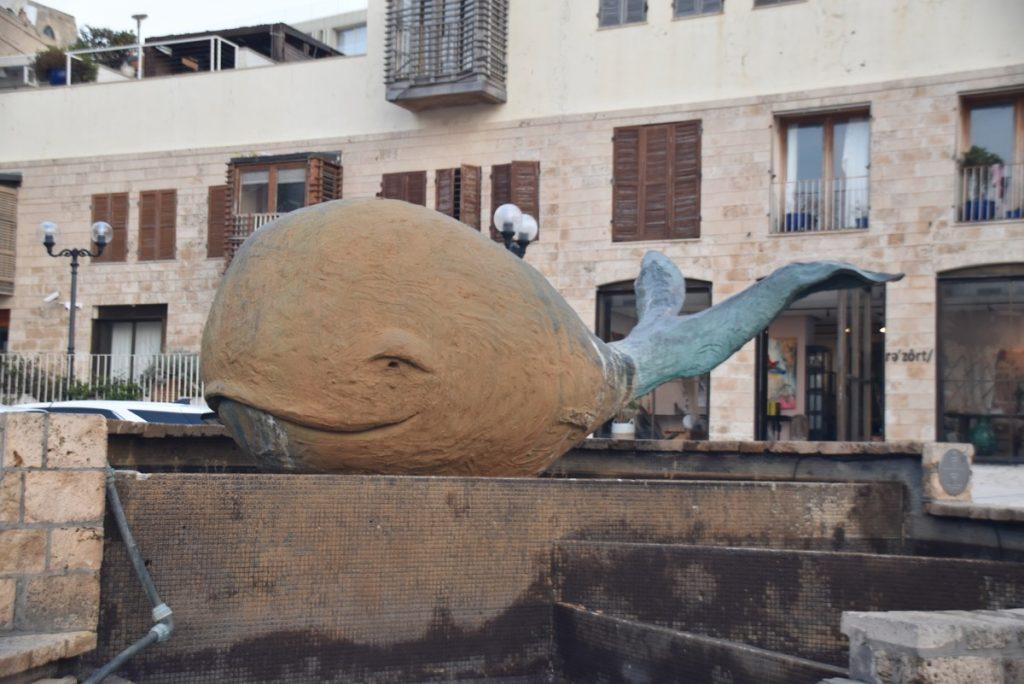 Jaffa whale Jan 2020 Israel Tour with John DeLancey