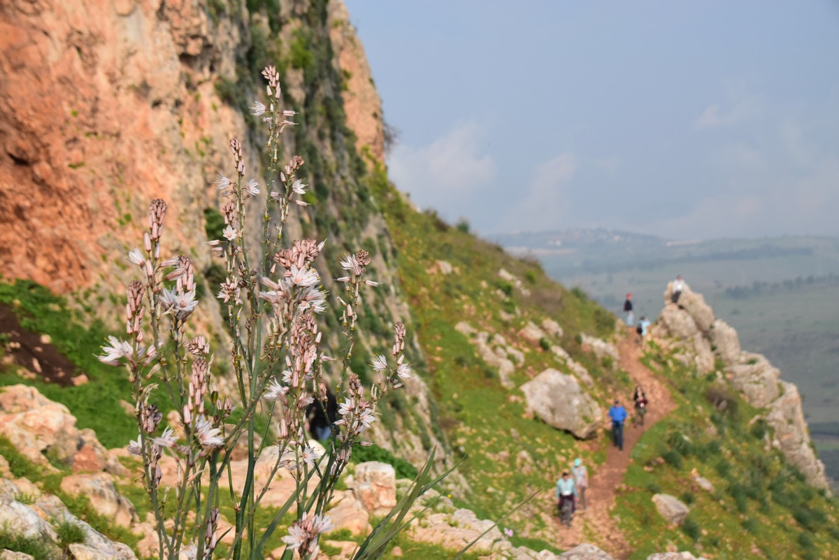 Hike up Arbel