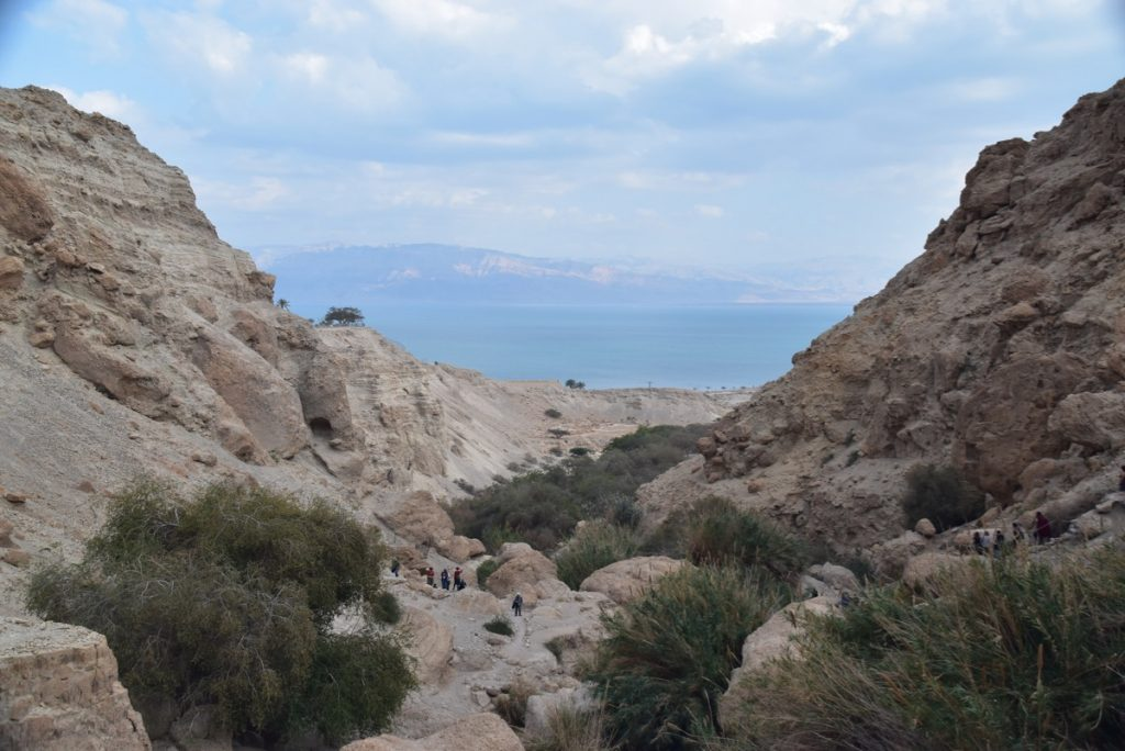 Engedi Feb 2020 Israel Tour with John Delancey of Biblical Israel Ministries & Tours
