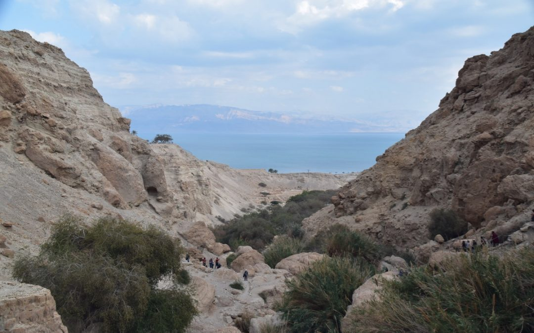 February 2020 Israel Tour Summary (with Egypt): Day 6