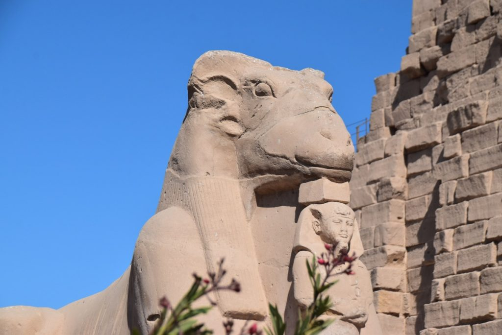 Karnak Temple Feb 2020 Egypt Tour with John DeLancey BIMT