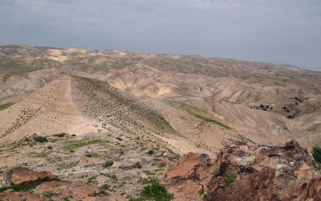 February 2020 Israel Tour Summary (with Egypt): Day 7