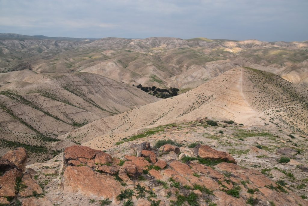 Judean Desert Feb 2020 Israel Tour with John DeLancey and BIMT