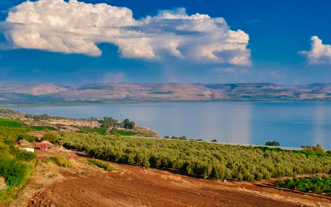 Devotions from Israel – Mark 4