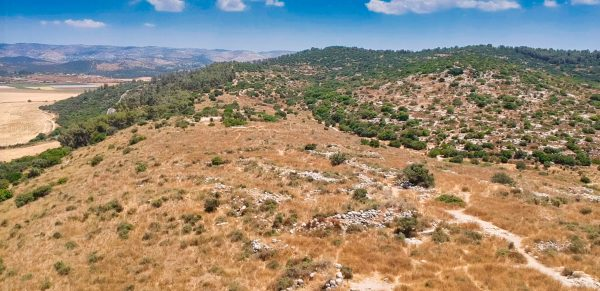 Drone pic of Socoh and Elah Valley