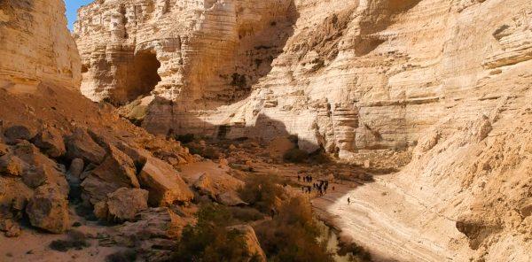 Drone pic of Zin Desert